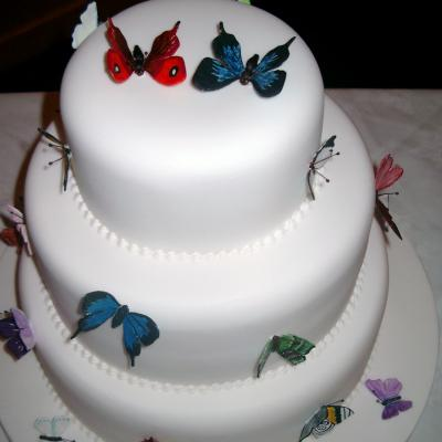 Sugarcraft Butterflies
