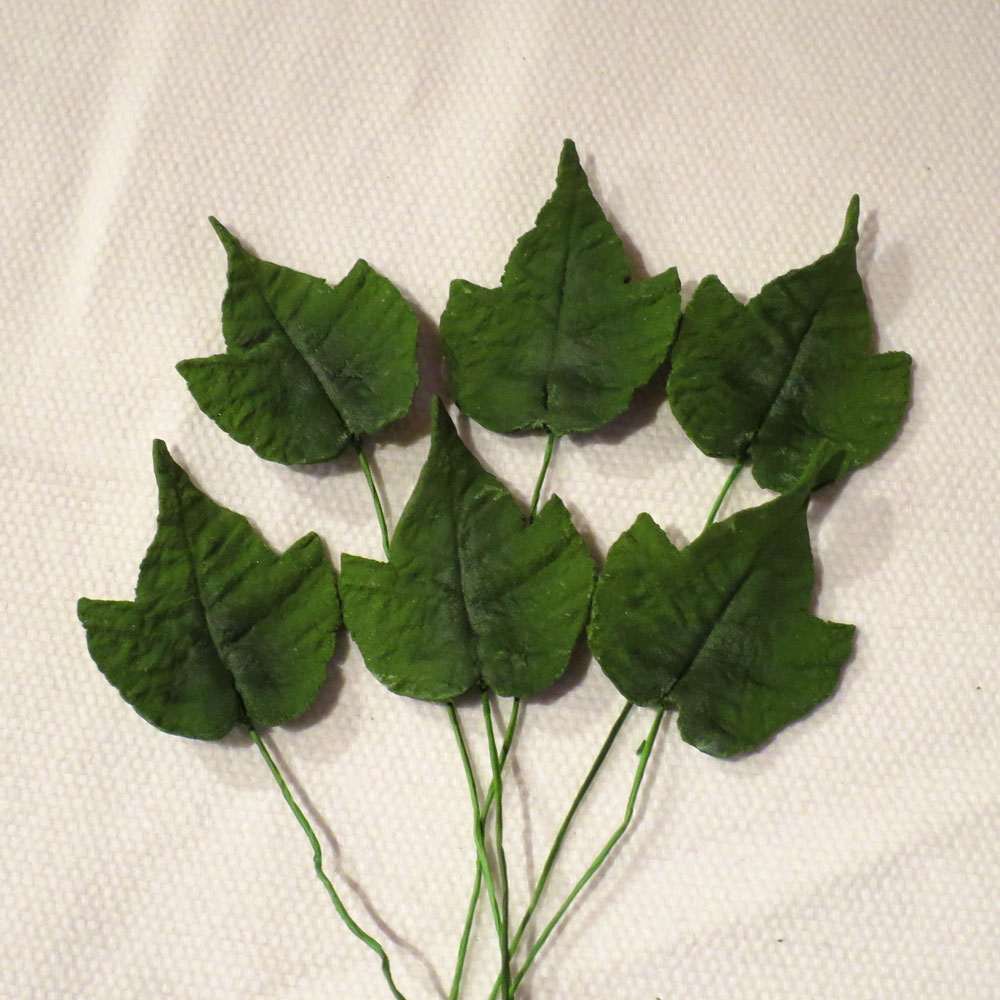 Large Green Ivy Leaves