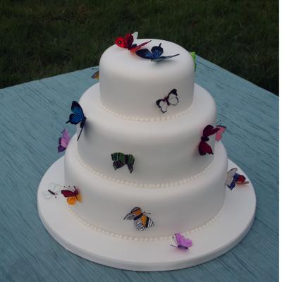 Wedding Cake with Painted Butterflies