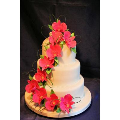 Wedding Cake with Pink Sugar Orchids