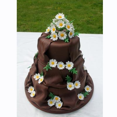 Chocolate Wedding Cake with Daisies