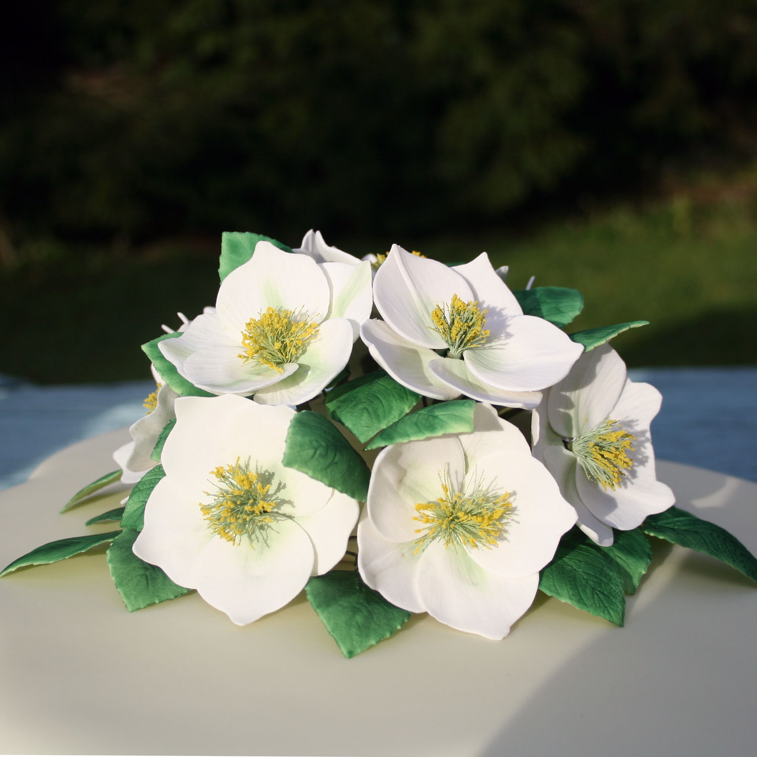 Sugarcraft Christmas Roses
