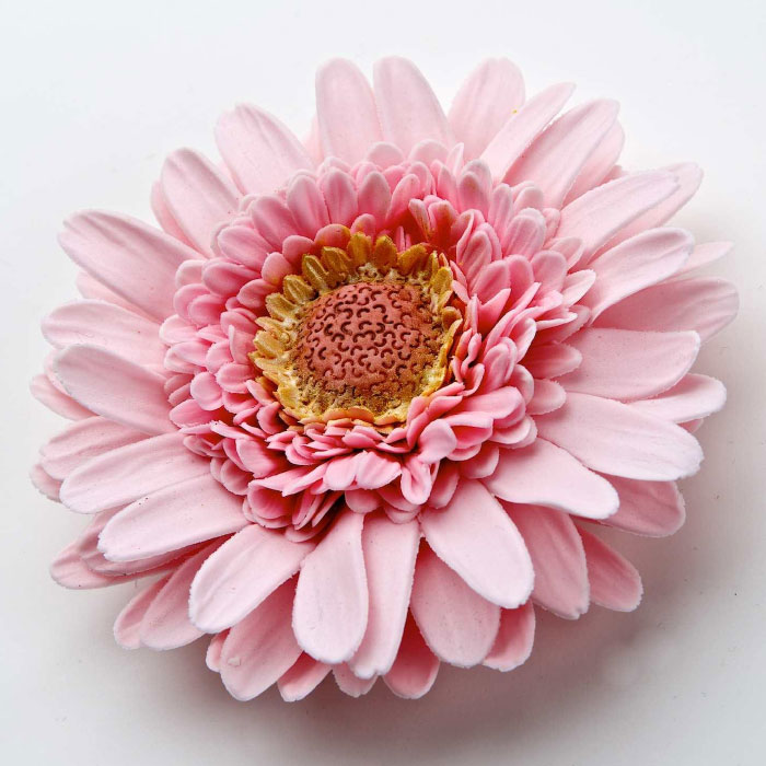 Sugarcraft Gerbera