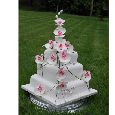 Square Wedding Cake decorated with Moth Orchids