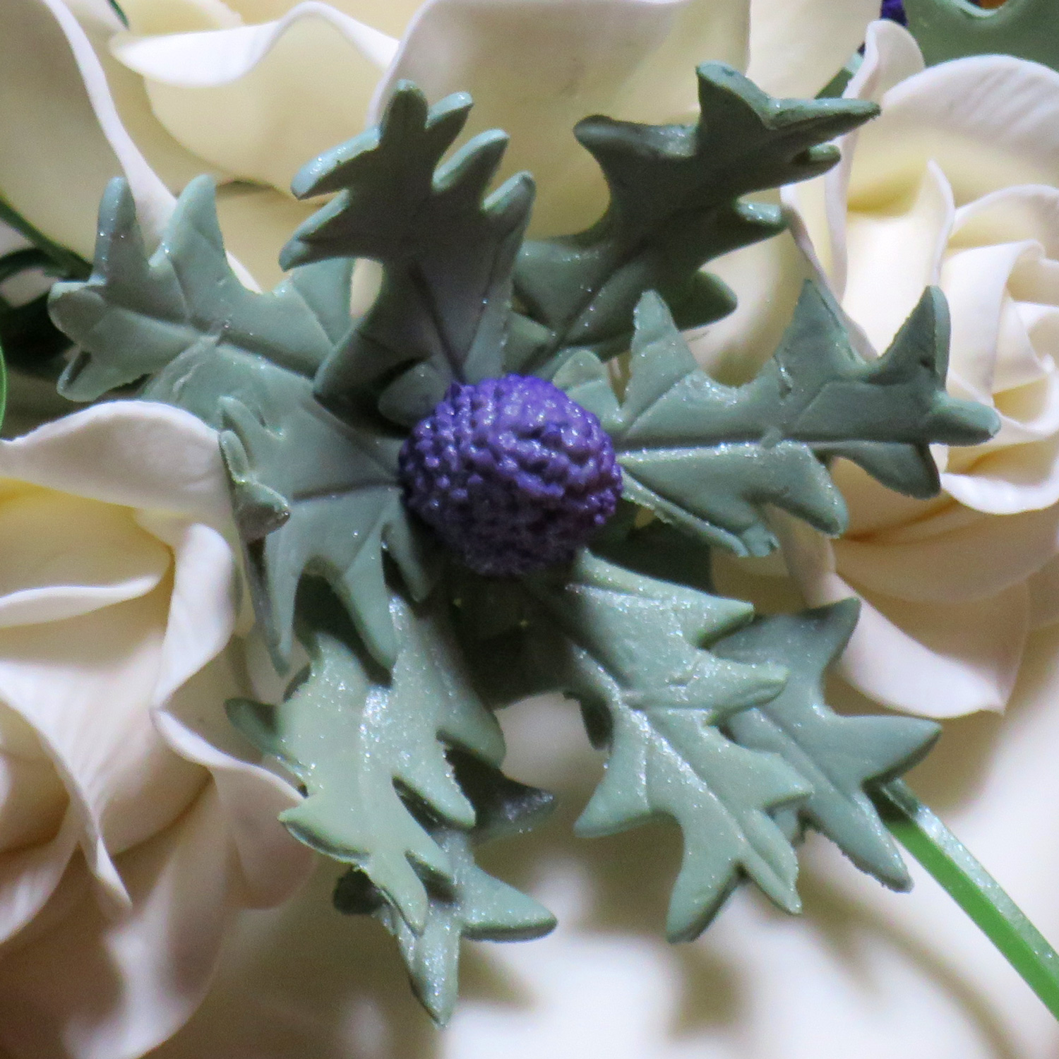 Sea Holly Thistle
