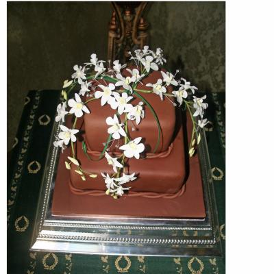 Siam Chocolate Wedding Cake decorated with Sugar Orchids